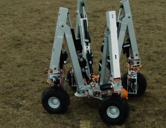 Wyposażony w elektrody robot usuwa chwasty