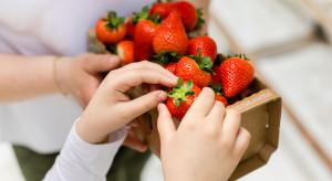 Co czwarty Polak jadł już truskawki w kwietniu