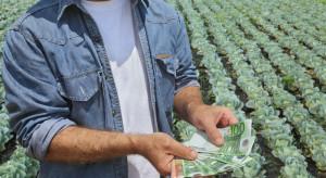 Integracja rolników, infrastruktura, ekologia - na co trafią fundusze z KPO?