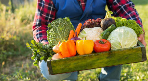 Jak powinna wyglądać korzystna dla rolnika umowa na dostawy produktów?