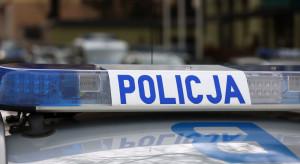 Łosice: Policja odzyskała skradzione ozdobne jabłko