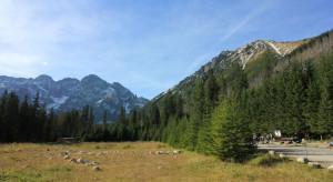 Tatrzański Park Narodowy organizuje akcję sprzątania Podhala