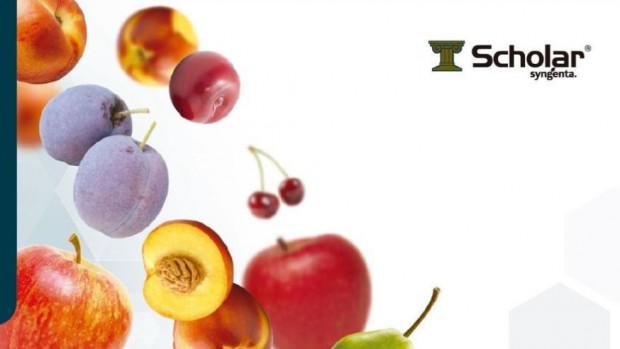 Nowy fungicyd dla owoców ziarnkowych i pestkowych