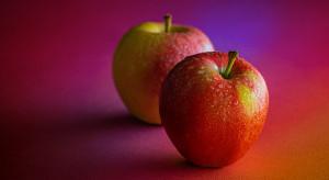 Spadek w eksporcie mołdawskich jabłek