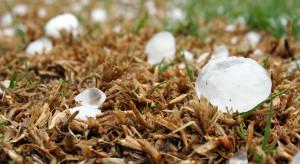 IMGW ostrzega przed burzami z gradem m.in. na Mazowszu i Lubelszczyźnie