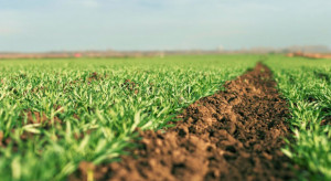 MF: stawka VAT na preparaty mikrobiologiczne dla rolnictwa bez zmian