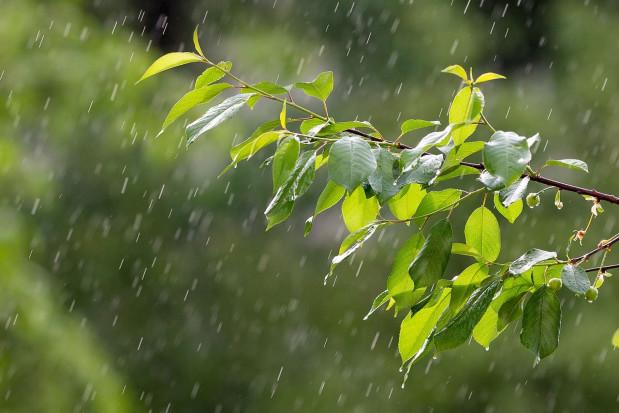 IMGW: W czwartek przelotne opady; do 18 st. C