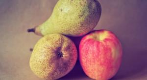 Belgia: Handel jabłkami i gruszkami dobiega końca