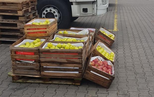 Niedziela na Broniszach: jak przebiega sprzedaż jabłek deserowych?