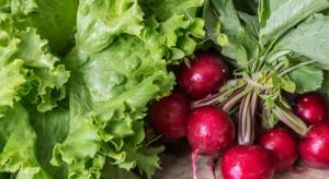 Niemcy: Wzrosły ceny owoców i warzyw