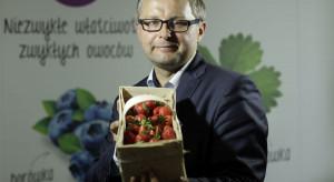 Plantatorzy truskawek chcą uniezależnić się od pogody. Przybywa upraw tunelowych