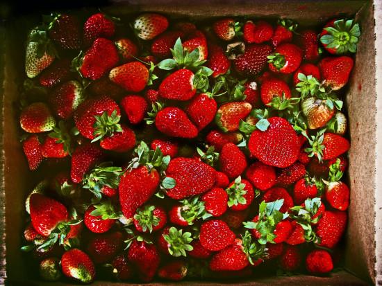 Truskawki - coraz mniejsza różnica pomiędzy cenami polskich a importowanych owoców