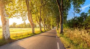 Małopolskie: są pieniądze na remonty dróg dojazdowych do pól uprawnych