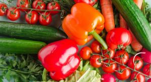 Pomidor, marchew, ogórki - to najpopularniejsze warzywa maja