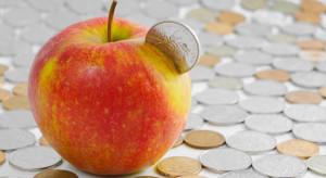 Sądeccy sadownicy: coraz mniej opłaca się być producentem jabłek