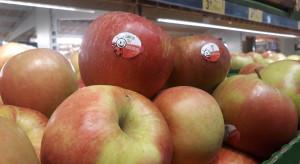 Tanie jabłka w Biedronce, drogie w Lidlu. Promocje na maliny i borówki