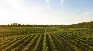 Gorączka na wykup ziemi - czy objęła też działki rolne?