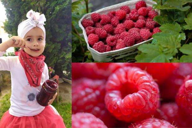 Malinowe Wzgórze: owoce produkuje się dla ludzi (wywiad)