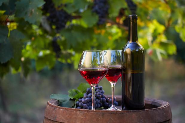 Włochy: wyjątkowe wino z winnicy koło Koloseum