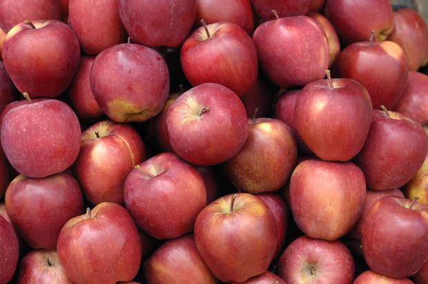 Południowy Tyrol: jakie były ceny jabłek w maju?