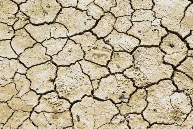 USA: Zachodnie stany mierzą się z suszą i rekordowymi temperaturami