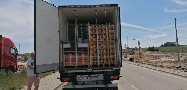 Litewska ciężarówka przeładowana owocami i warzywami zatrzymana