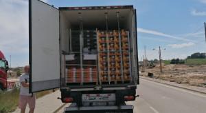 Transport zagranicznych owoców i warzyw zatrzymany w Budzisku
