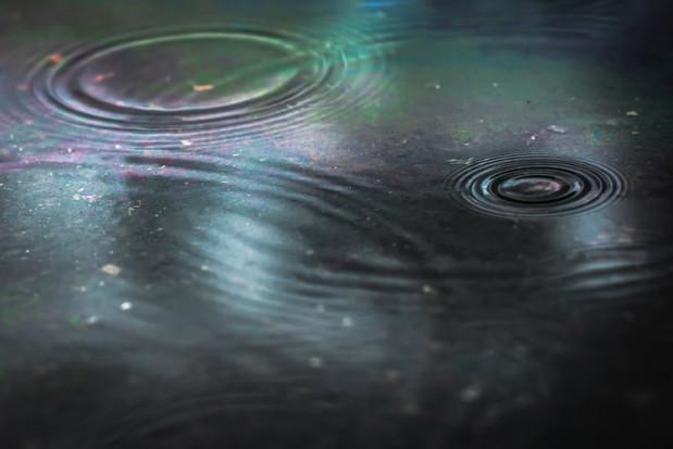 Wody Polskie: mimo zmian klimatu zatrzymujemy coraz więcej wody