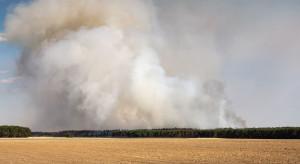 IBL: Wzrasta zagrożenie pożarowe; najgorzej na zachodzie i północy kraju