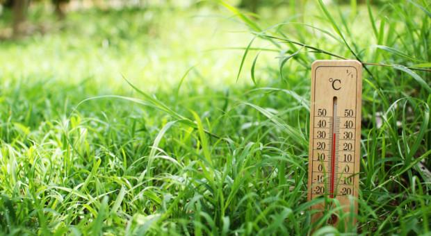 IMGW ostrzega: upały w całym kraju; do 34 st. C.