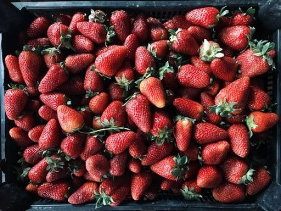 Grójeckie: Niewielkie wzrosty cen truskawek w skupach