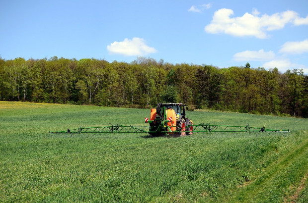 Rynek produktów rolnictwa zrównoważonego osiągnie wartość 64,6 mld zł?