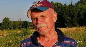 Truskawkowy Dziadek i inni plantatorzy wykończeni wysokimi kosztami produkcji