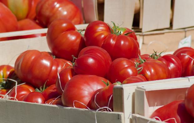 Meksyk ustanowi nowy rekord w eksporcie pomidorów?