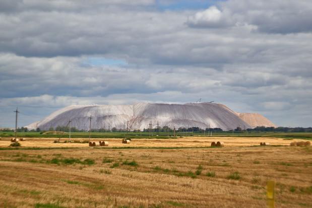 Zakaz importu nawozów z Białorusi spowoduje wzrost cen na rynku?