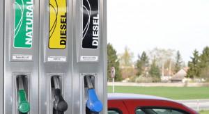 Analitycy: Wzrost cen paliw na początek wakacji
