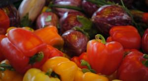 Sezon na polskie warzywa jest już w pełni