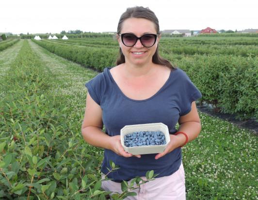 Anna Litwin,Blue Haskap: Uprawa jagody kamczackiej to trudny kawałek chleba (wywiad)