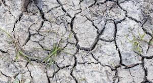 Nowe rozwiązania upraszczające procedury dot. przeciwdziałania skutkom suszy