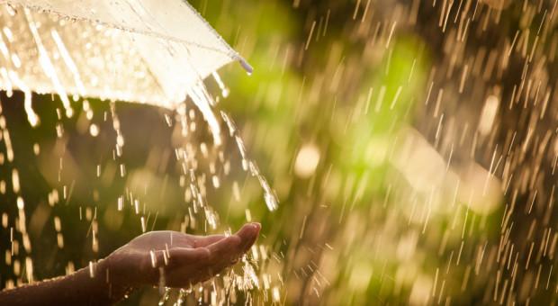 IMGW: w niedzielę przelotne opady deszczu i burze w całym kraju