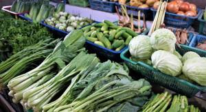 System dostaw lokalnej żywności powstał na Kujawach