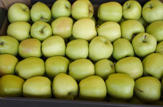 Jakie odmiany jabłek cieszą się największą popularnością wśród importerów?