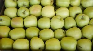 Jakie odmiany jabłek preferują importerzy?