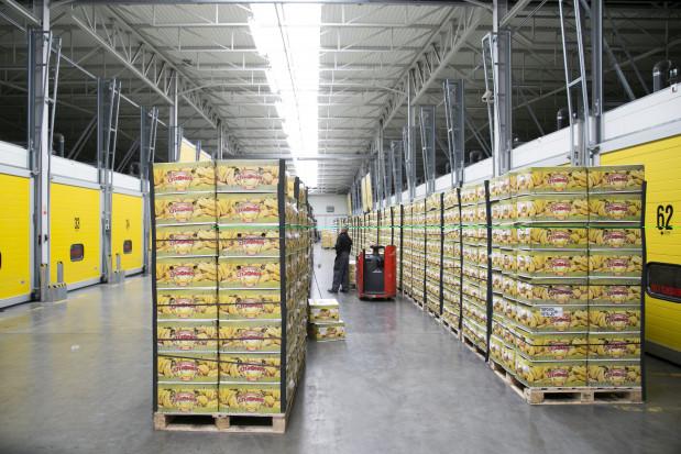 Citronex inwestuje w nową dojrzewalnię bananów na Węgrzech