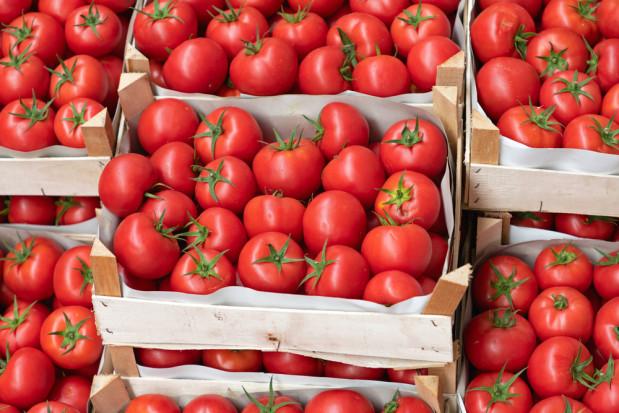 Mazowieckie: Ukradziono 600 kg pomidorów z giełdy warzywnej