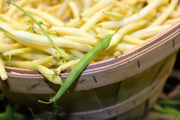 Fasolka szparagowa - jakie ceny na rynkach hurtowych?