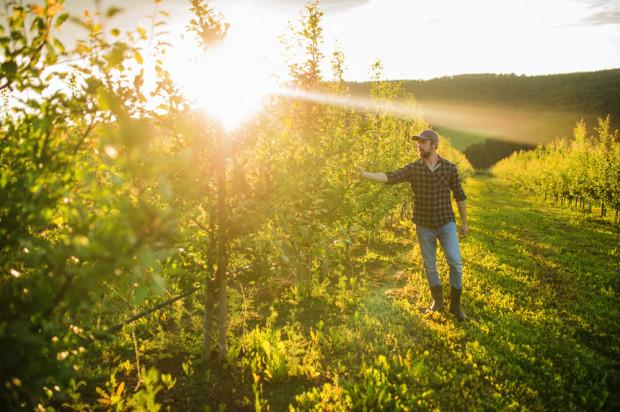 KRIR wydał opinię ws ustawy o rolnictwie ekologicznym