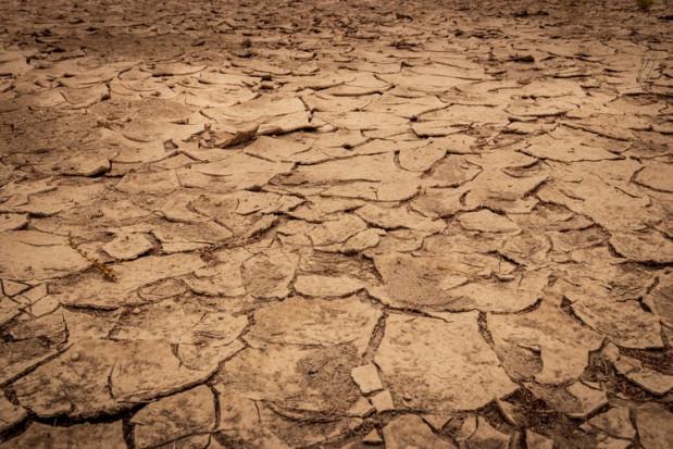 W Brazylii największa susza od ponad 90 lat. Potrzebne inwestycje w gospodarkę wodną