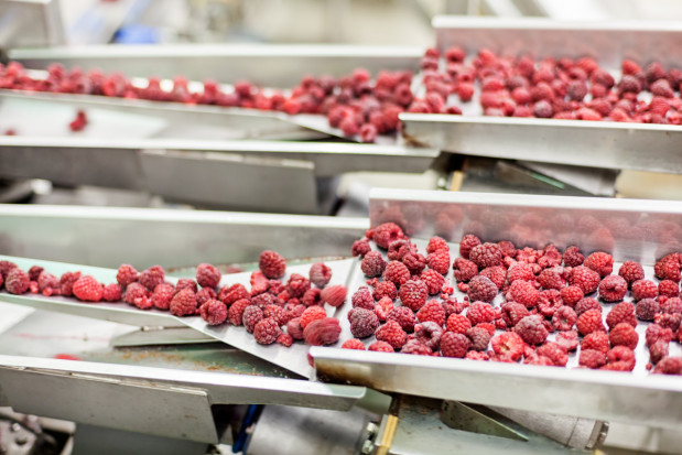 """Jak działa mechanizm """"huśtawki cenowej"""" na rynku owoców do przetwórstwa?"""