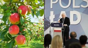Ubezpieczenia w rolnictwie - co obiecał Kaczyński?